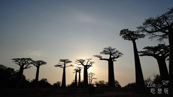 蜜月不正經 / 闖蕩吧!決定去馬達加斯加渡蜜月第一步:先去旅遊門診報到